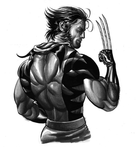 wolverine_by_jacksonherbert-d47mom2